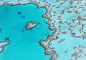 Η κλιματική αλλαγή θα έχει «σκοτώσει» όλους τους κοραλλιογενείς ύφαλους έως το 2100