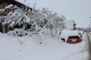 ΄΄Ιστορική΄΄ χιονόπτωση στην Λήμνο, οι αιτίες και φωτογραφικό υλικό